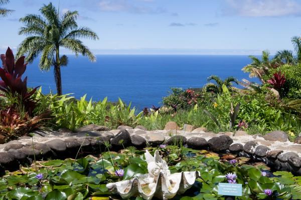 exercicios hawai maui garden of eden  michelle franzoni blog da mimis_-3