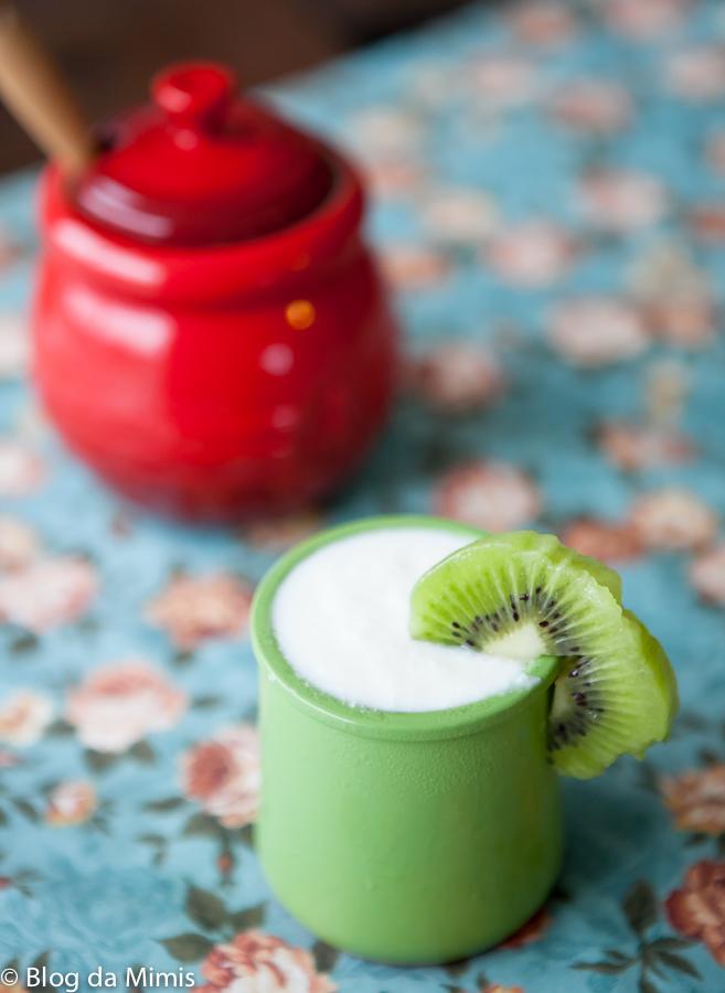iogurte caseiro receita dieta blog da mimis michelle franzoni_-3