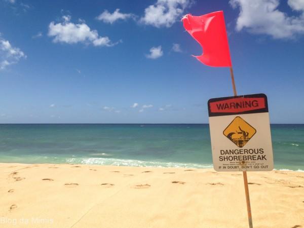 north shore hawaii  blog da mimis michelle franzoni_-13