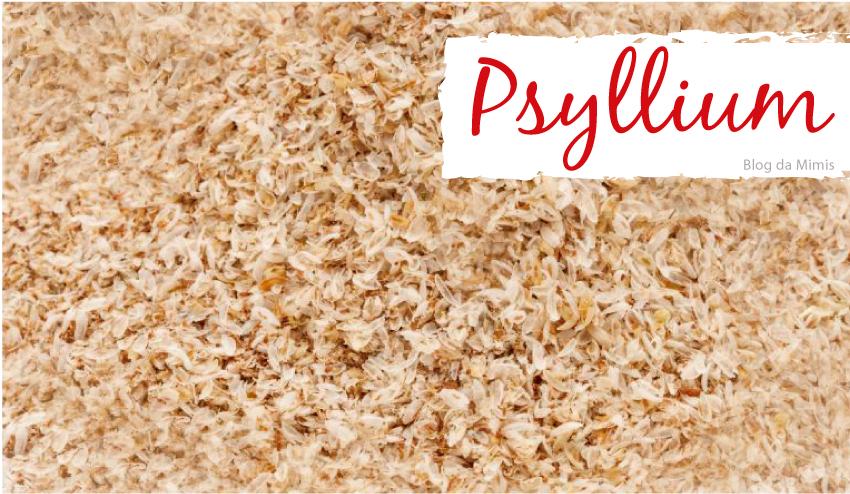 psyllium-capa-blog-da-mimis-michelle-franzoni