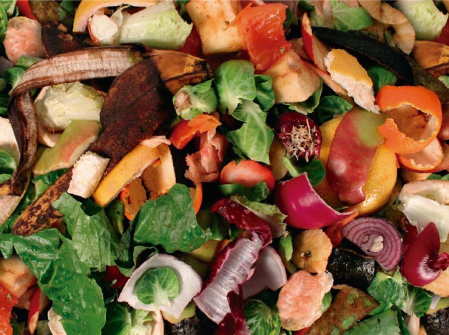 Aproveitando a casca dos Alimentos