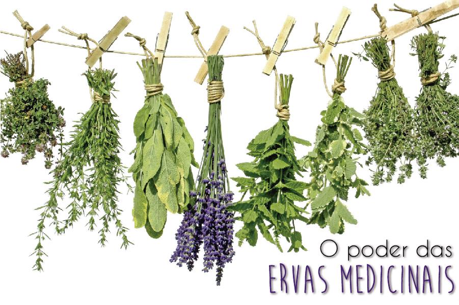 ervas-blog-da-mimis-michelle-franzoni-02