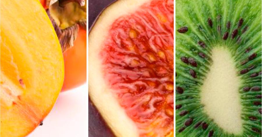 Frutas de outono
