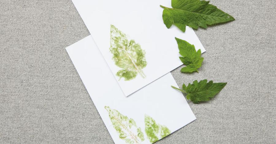 DIY: Papel de carta decorado