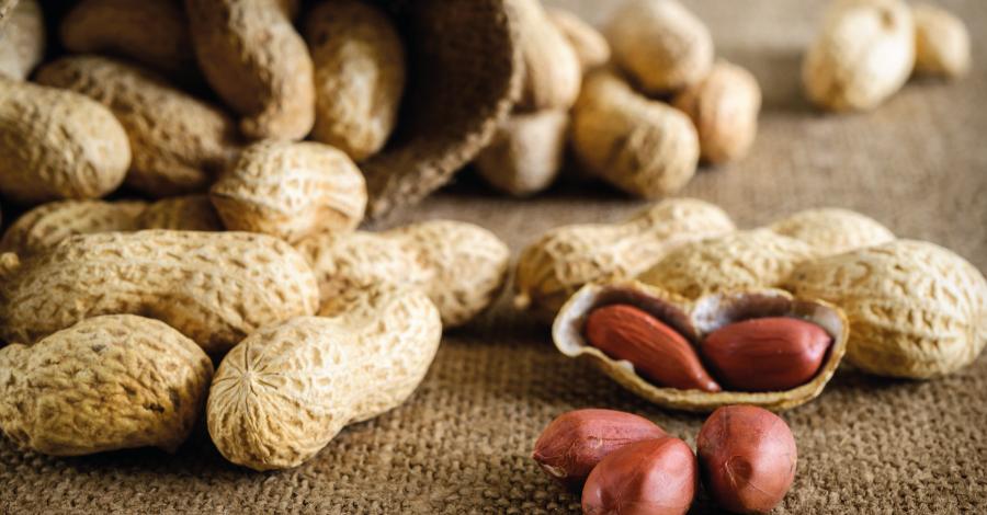 Amendoim: poderoso aliado da dieta e saúde