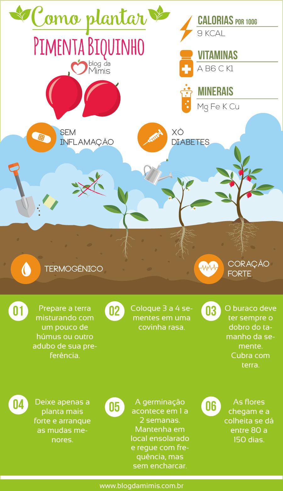 pimenta-biquinho-blog-da-mimis-michelle-franzoni-post-2