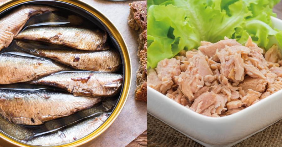 Batalha dos alimentos: atum ou sardinha, qual a opção mais saudável?