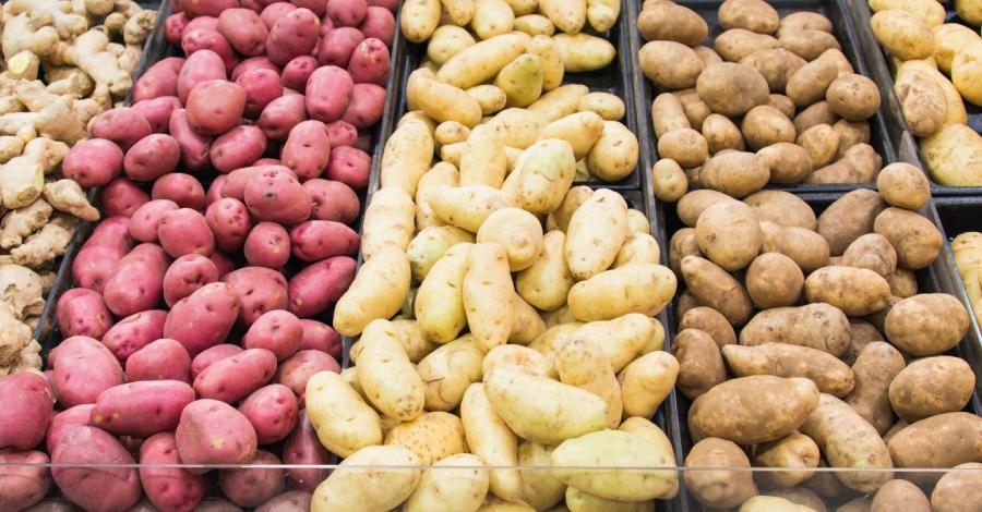 Batalha dos alimentos: diferenças entre as batatas doce e inglesa