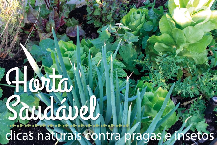 horta-saudável-blog-da-mimis-michelle-franzoni-destaque01