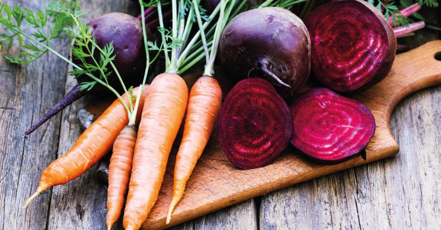 15 vegetais de inverno: truque para economizar e perder peso
