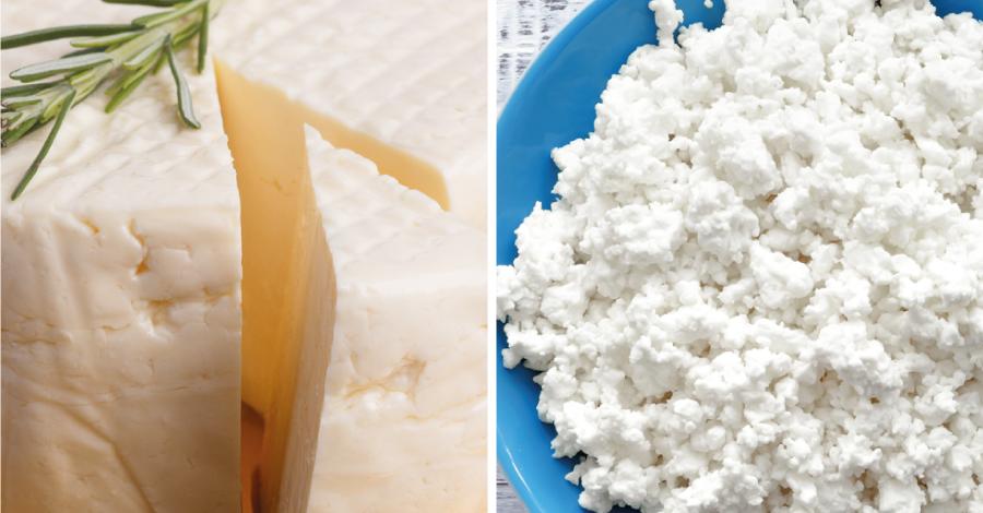 Batalha dos alimentos: queijo minas ou cottage na dieta?