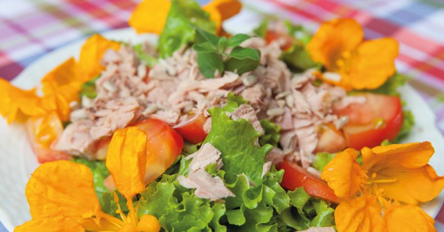 Salada florida de atum