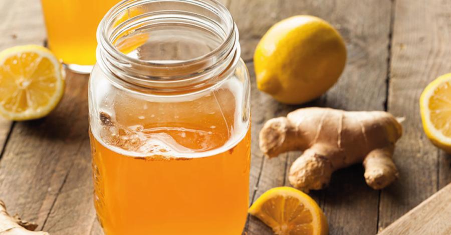 Kombucha: bebida probiótica que emagrece
