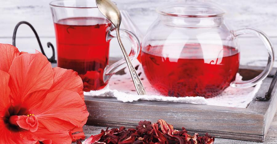Hibisco: mitos e verdades sobre o chá emagrecedor