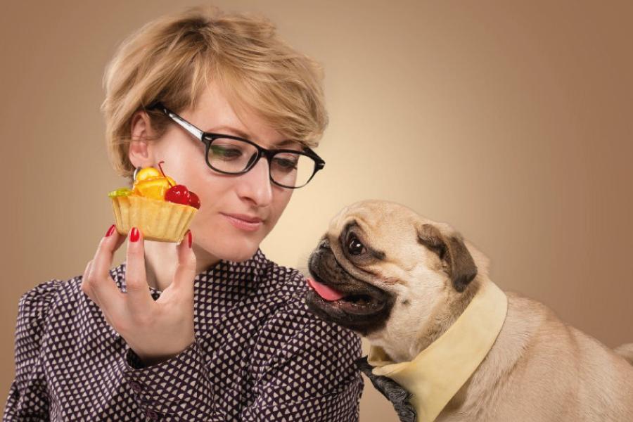 Alimentos tóxicos para cachorro