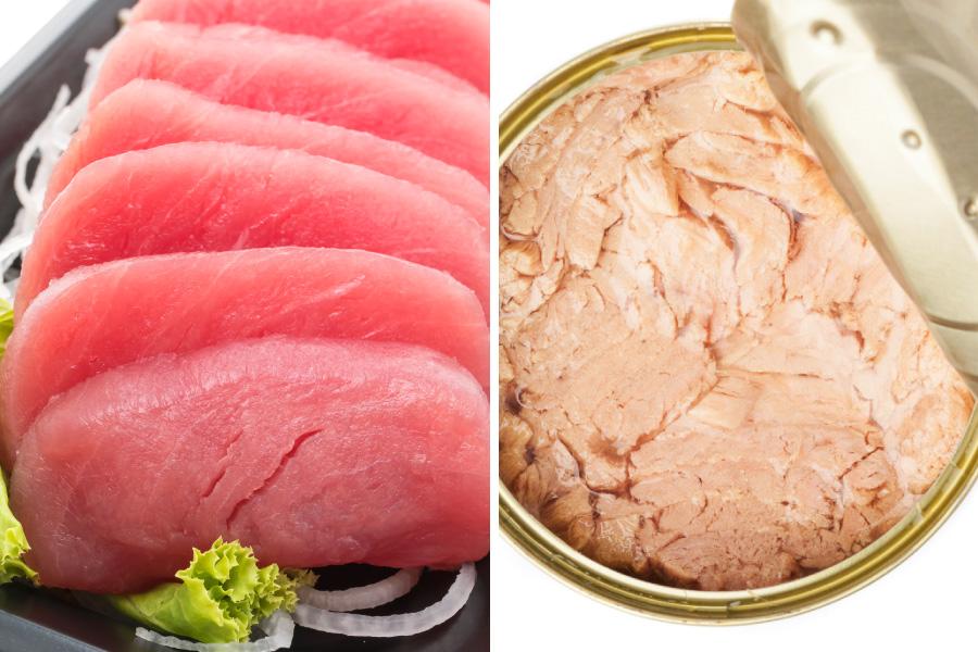 Atum e seus benefícios para a dieta
