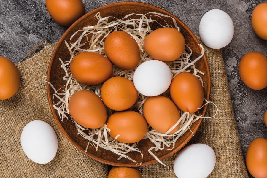 Ovos – mitos e verdades