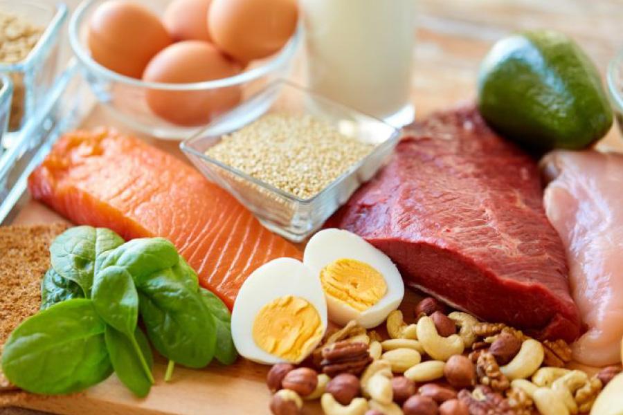Principais fontes de proteína